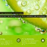 Webdesign, Typo3, WordPress und Sonstiges